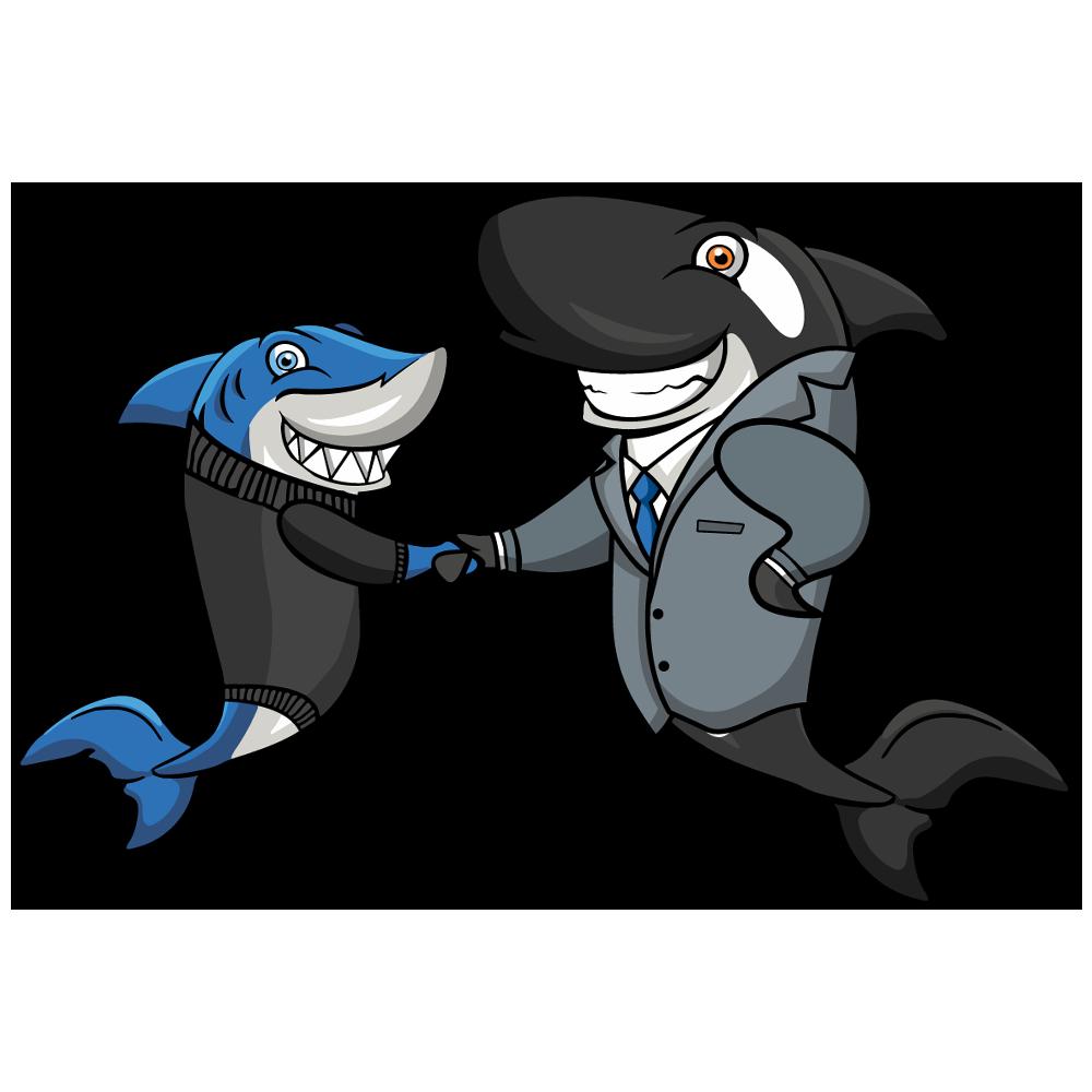 Shark not loading